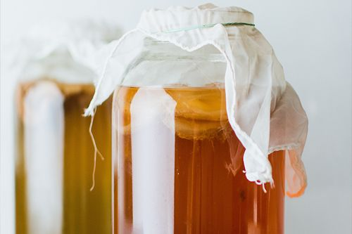 kombucha-recipe-one-gallon-fermenters-kitchen