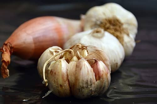 how to tell garlic gone bad